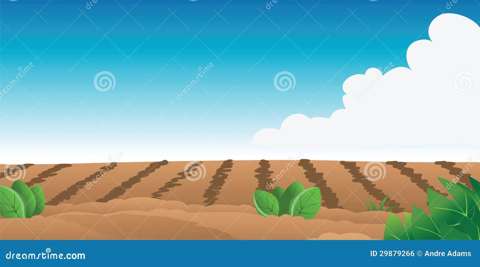 Campo de exploração agrícola