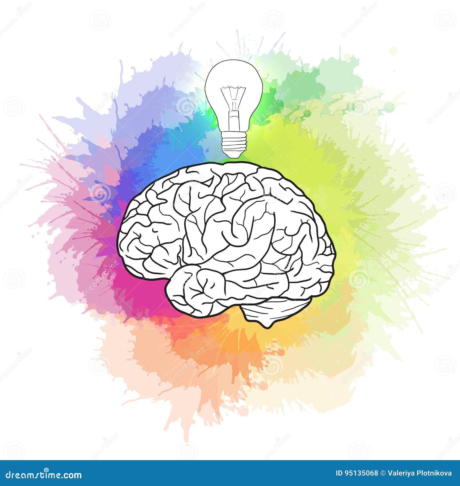 Ilustração linear do cérebro humano com ampola