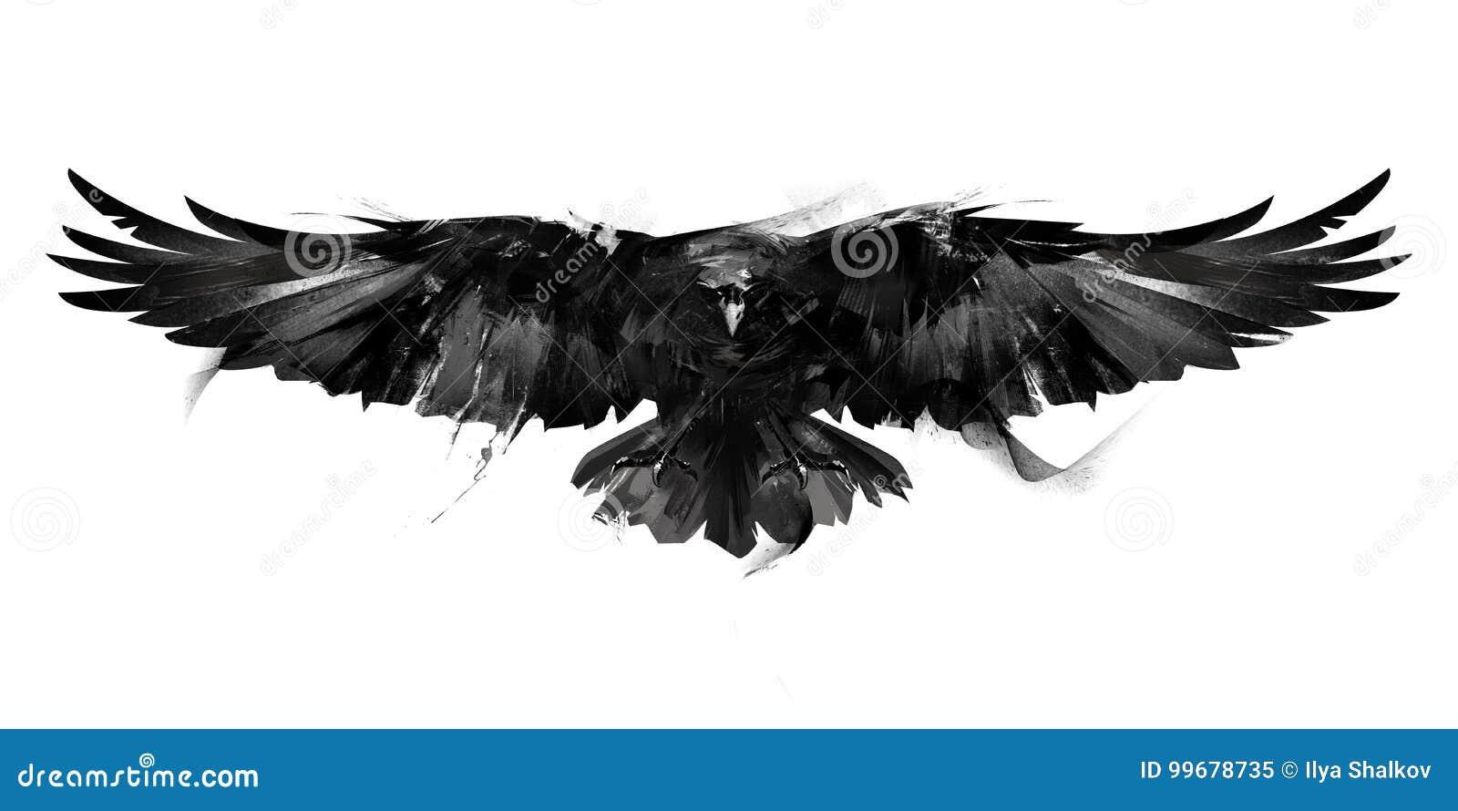 Ilustração preto e branco isolada de uma parte dianteira do corvo do pássaro de voo
