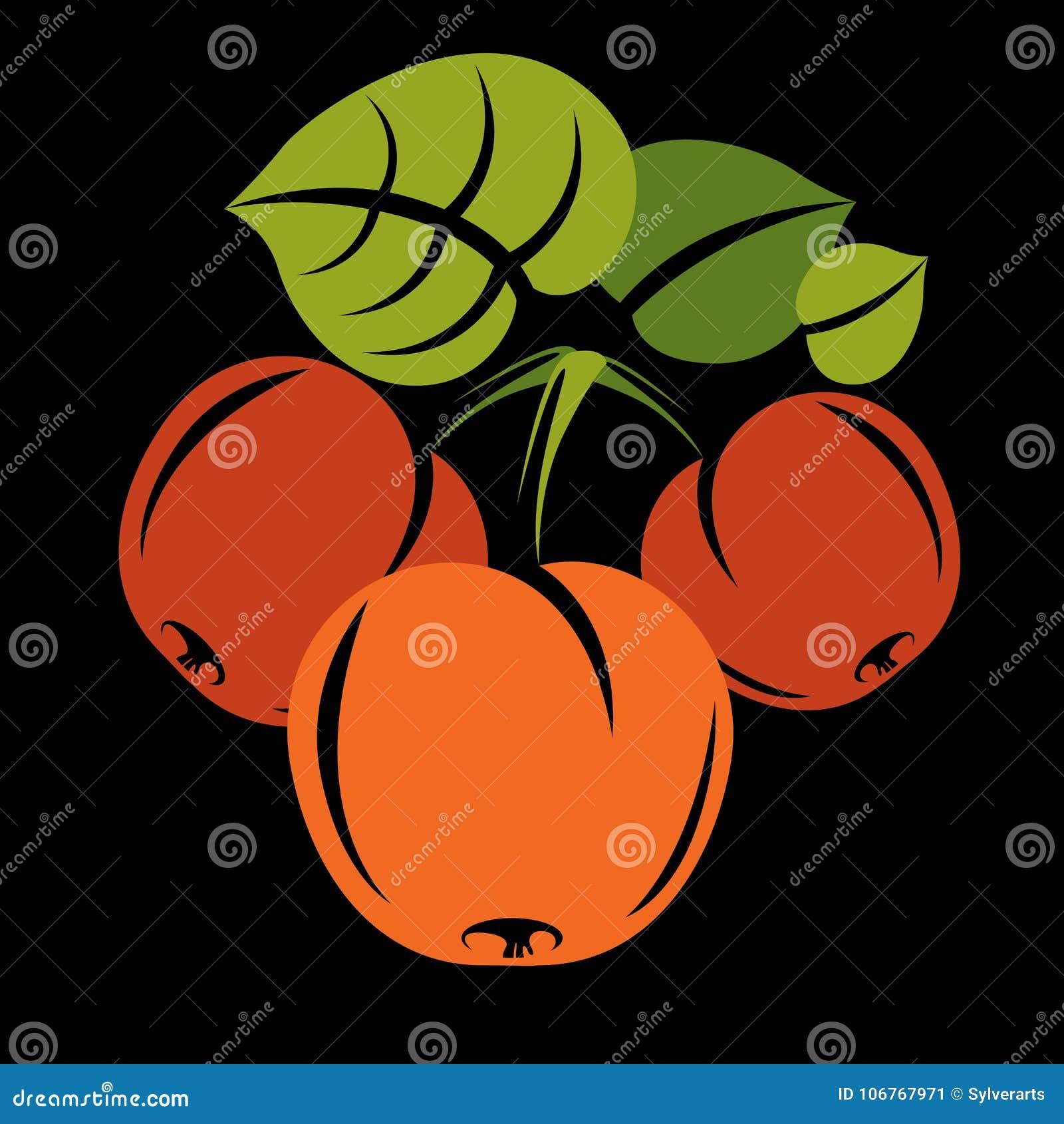 A ilustração simples do alimento biológico do vegetariano, vector a laranja madura