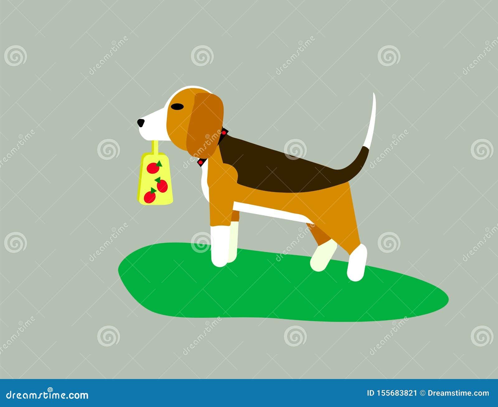 Ilustra??o do vetor no fundo cinzento O cão o lebreiro ou o harrier anda através do gramado na grama Assine a