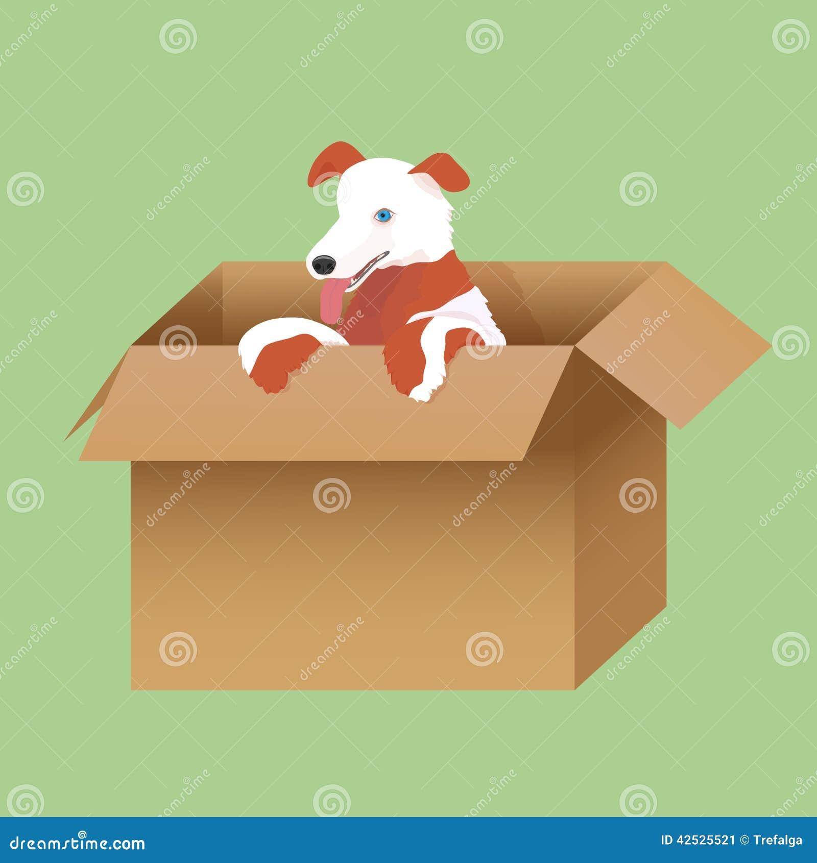 Ilustracja szczeniak w pudełku