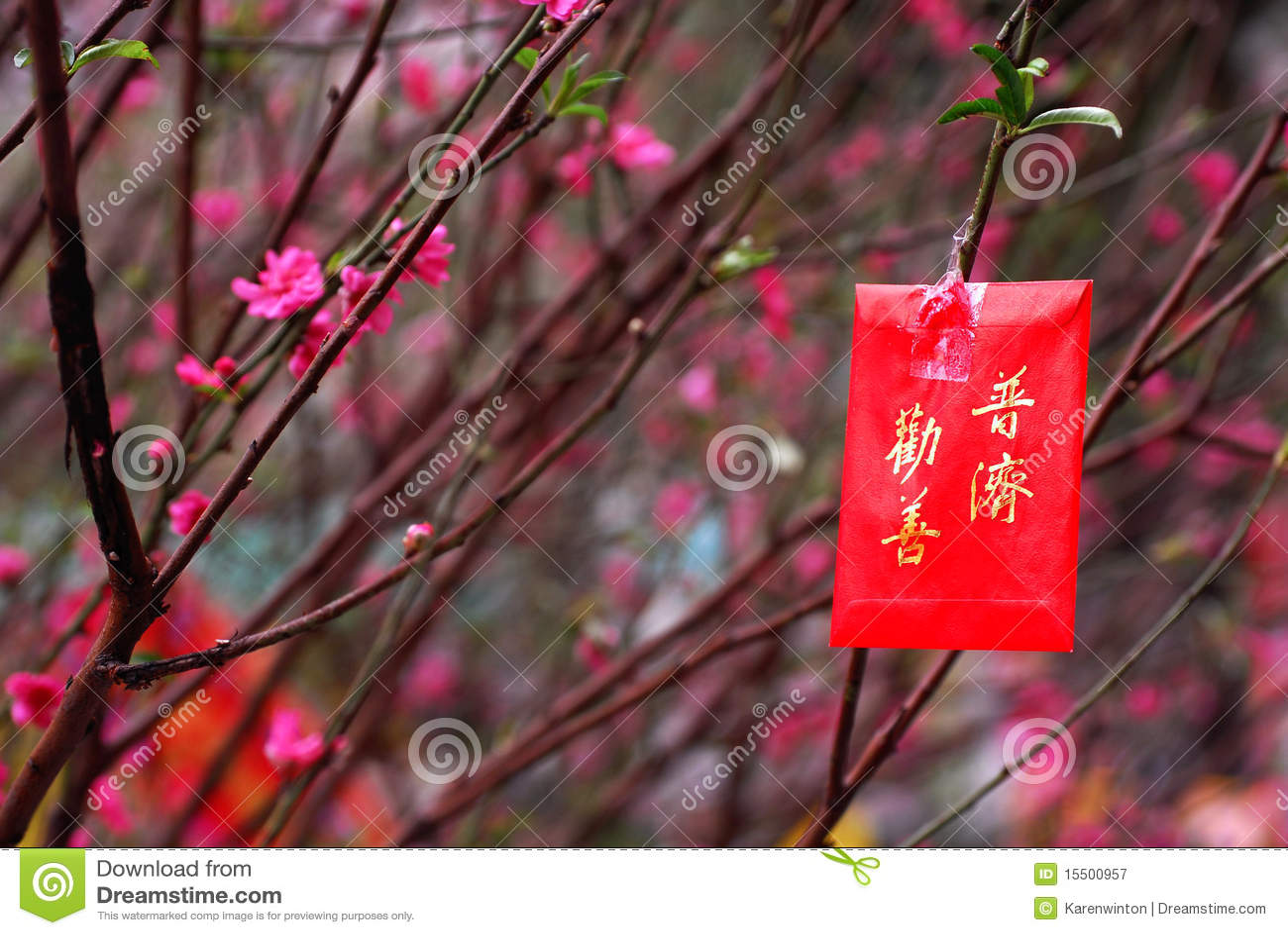 Imágenes chinas del Año Nuevo