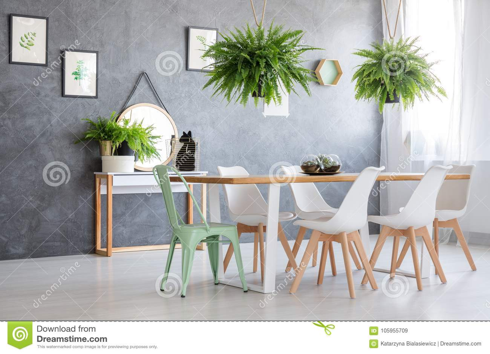 Imágenes de diversas hierbas