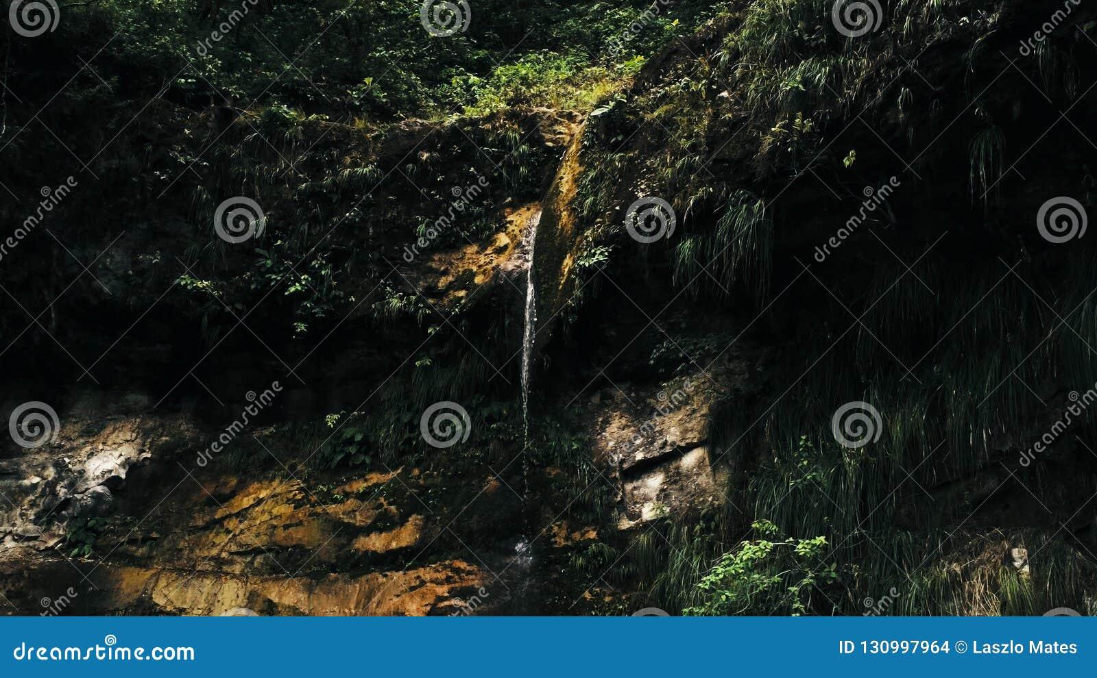 Image aérienne cinématographique de bourdon de cascade et d une petite piscine profondément dans la jungle de forêt tropicale au