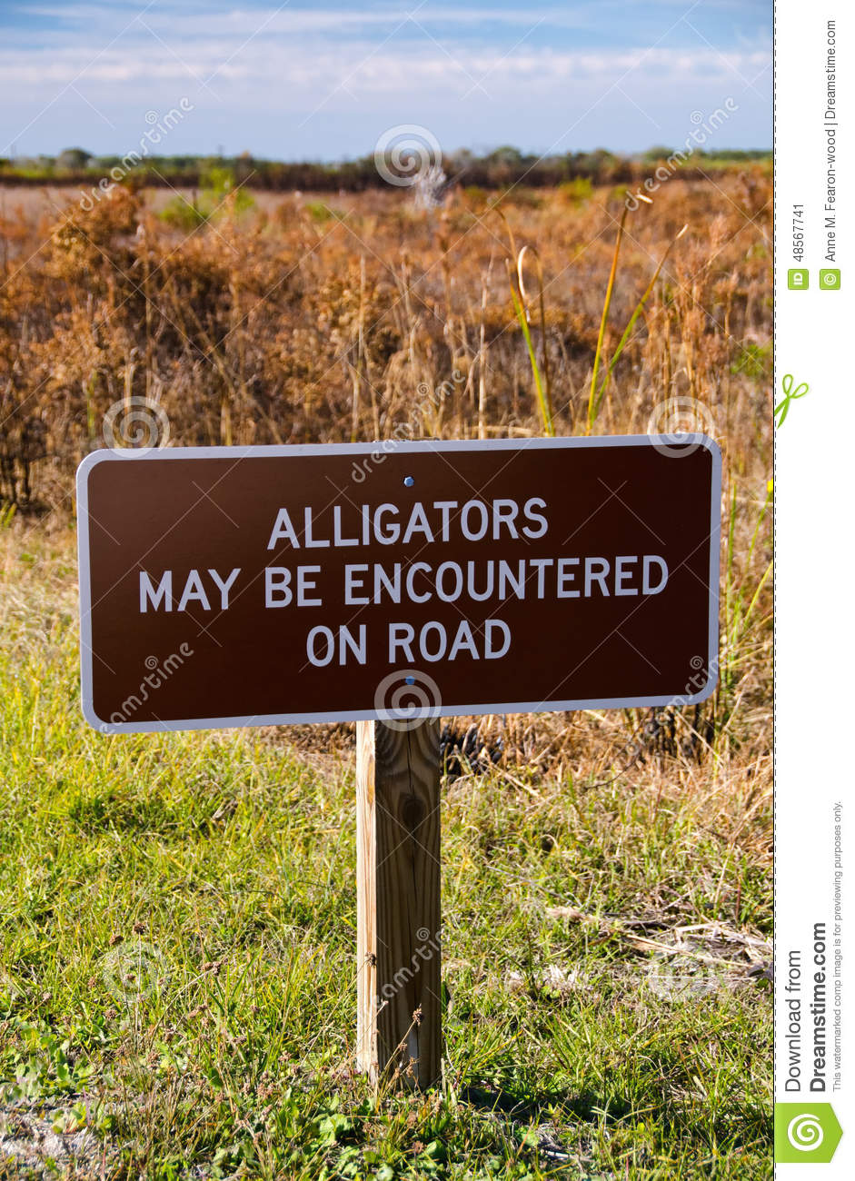 an image of alligators be encountered on road sign stock photo an image of alligators be encountered on road sign