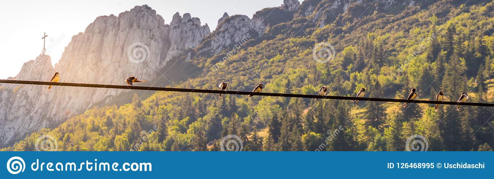 Image of birds sitting on a power line with sunset and mountainlandscape in the background
