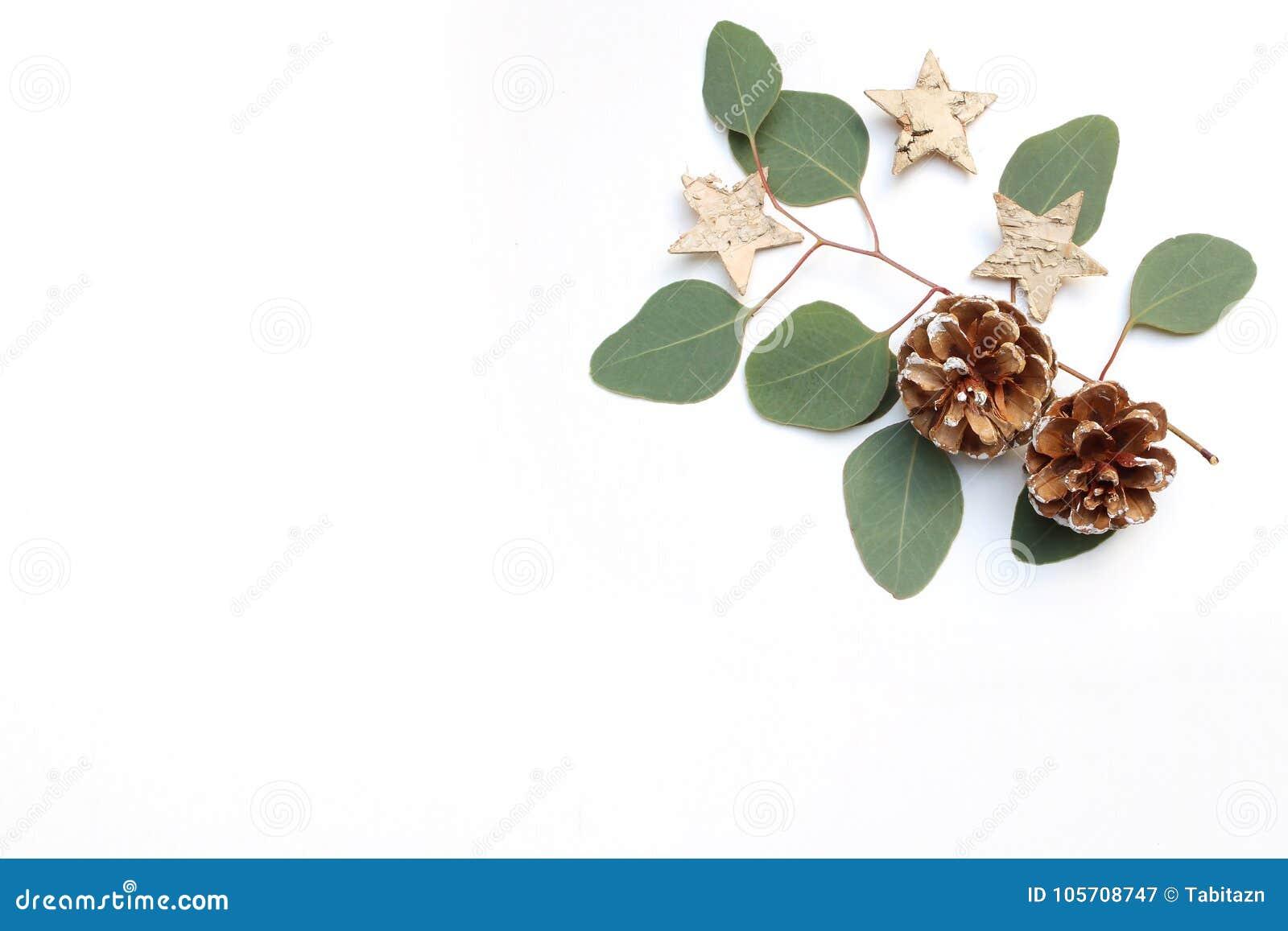 Image courante dénommée de fête de Noël Composition florale en cadre avec des cônes de pin, des branches d eucalyptus et le boule