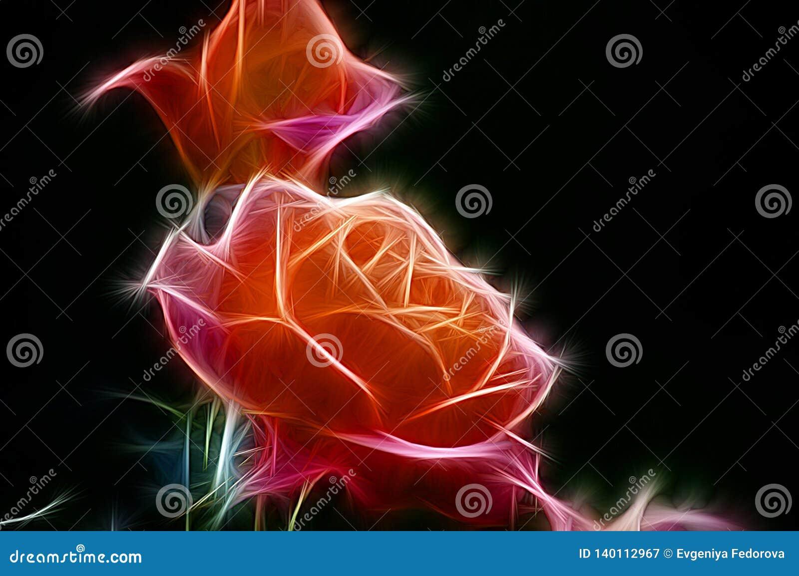 Image de fractale d un buisson des roses oranges