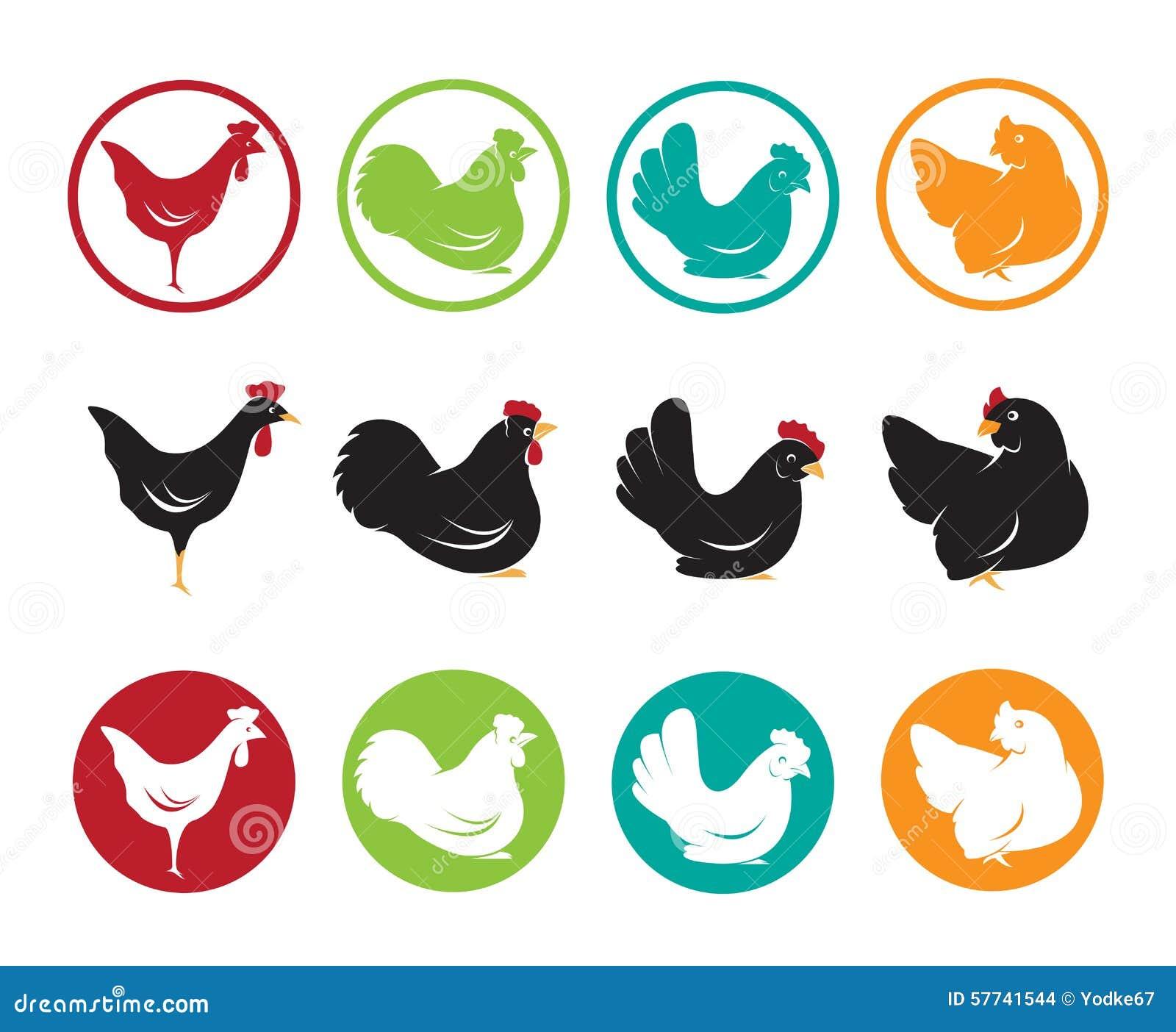 Image de vecteur d 39 une conception de poule illustration de - Image d une poule ...