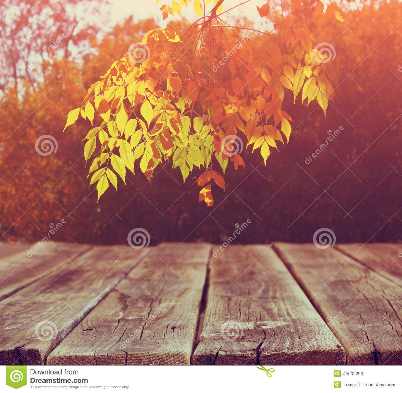 Image Of Front Rustic Wood Boards And Background Fall Leaves In