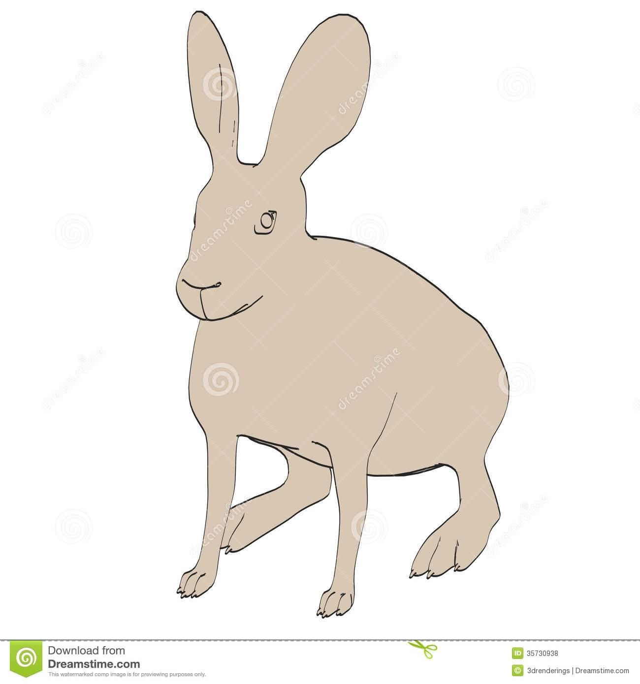 Image Of Hare Animal R...