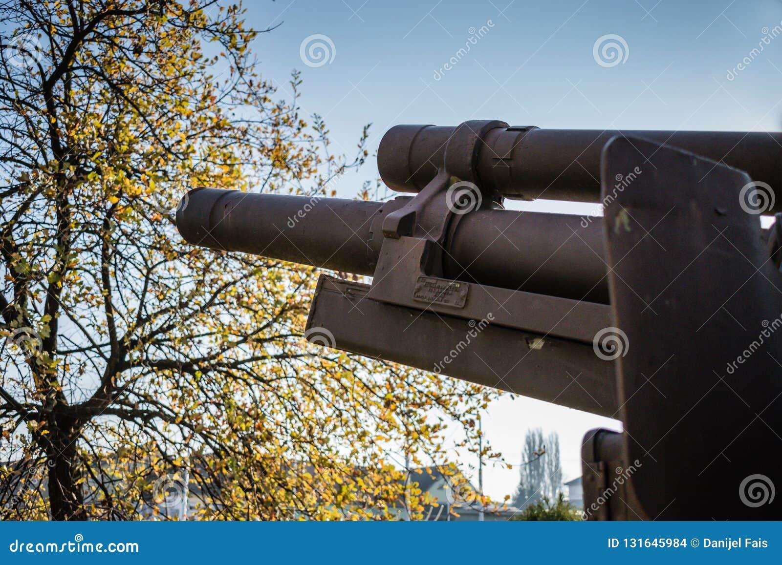 Image latérale de canon court de baril de vieil obusier