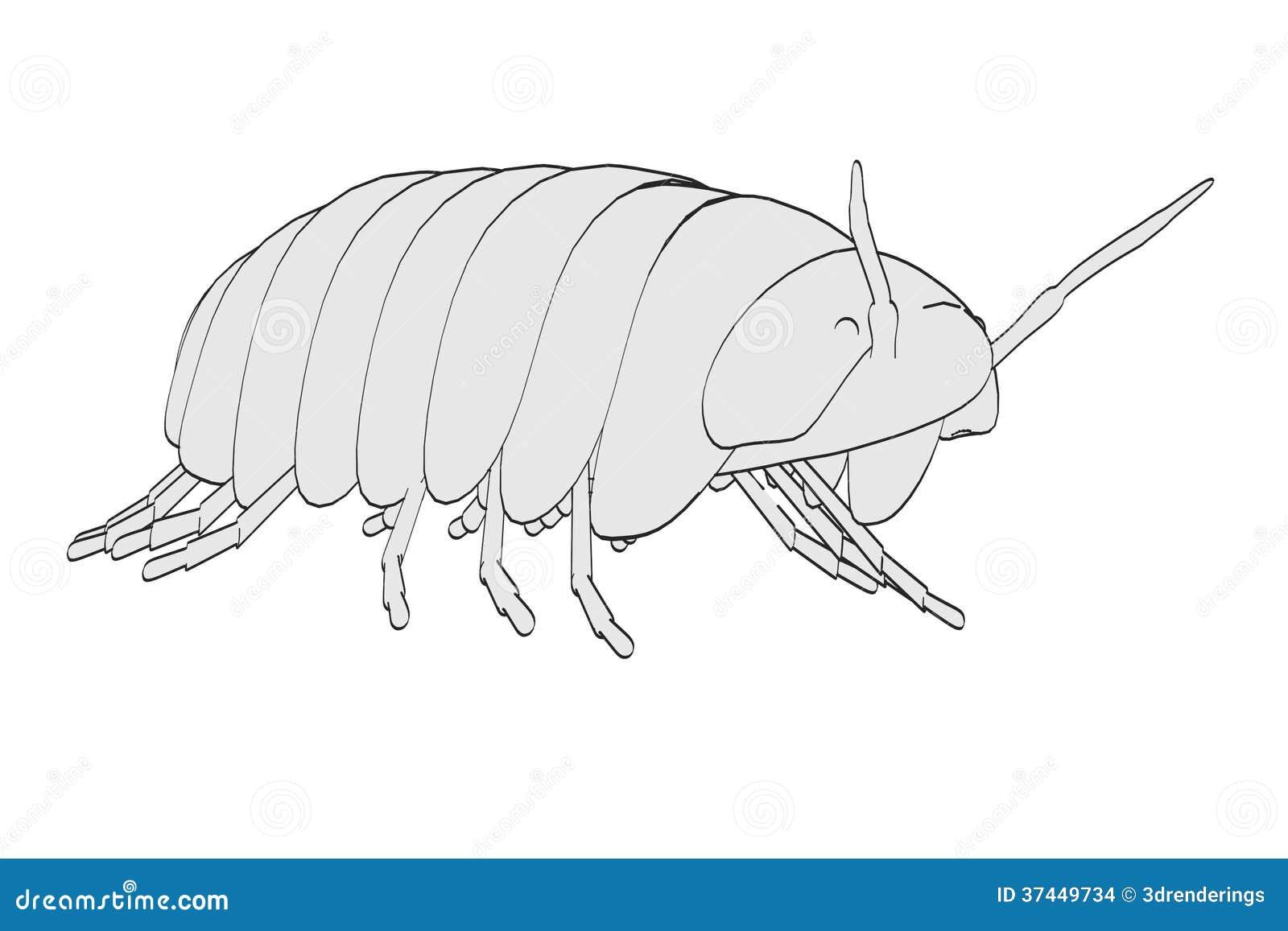 Pill bugs clip art