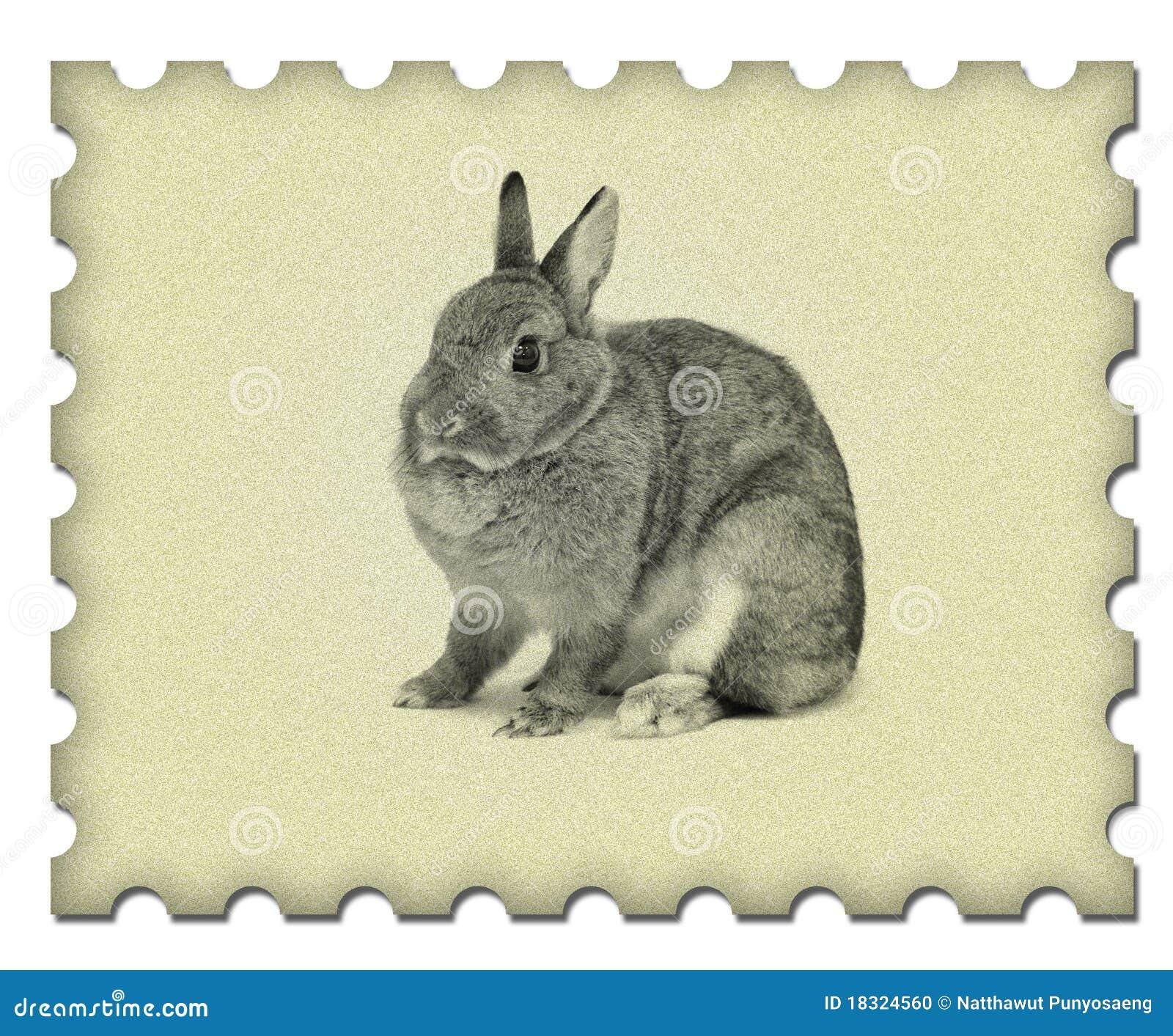 Tiny Paper Bunnies