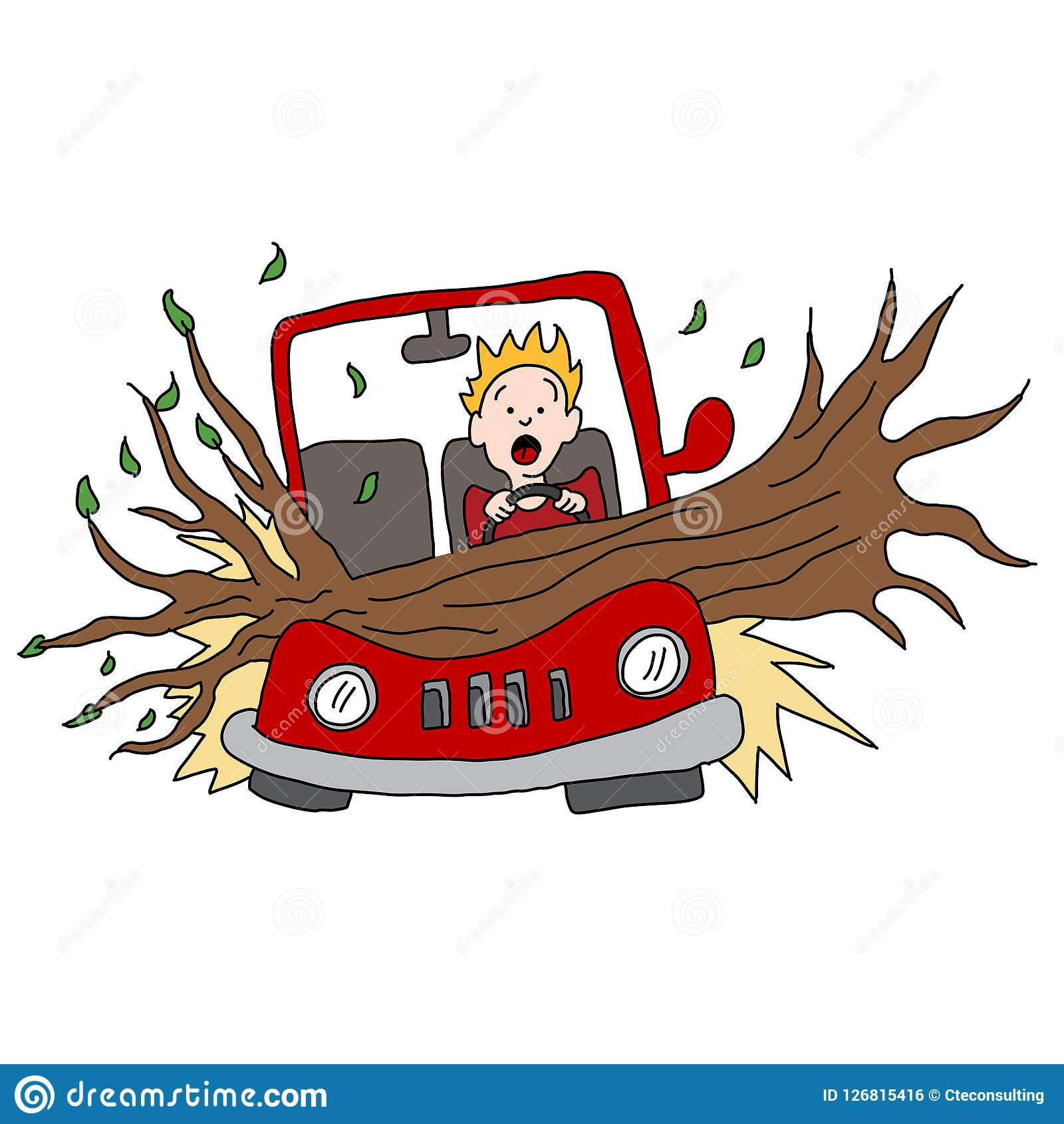 Tree Branch Damages Car in Wind Storm