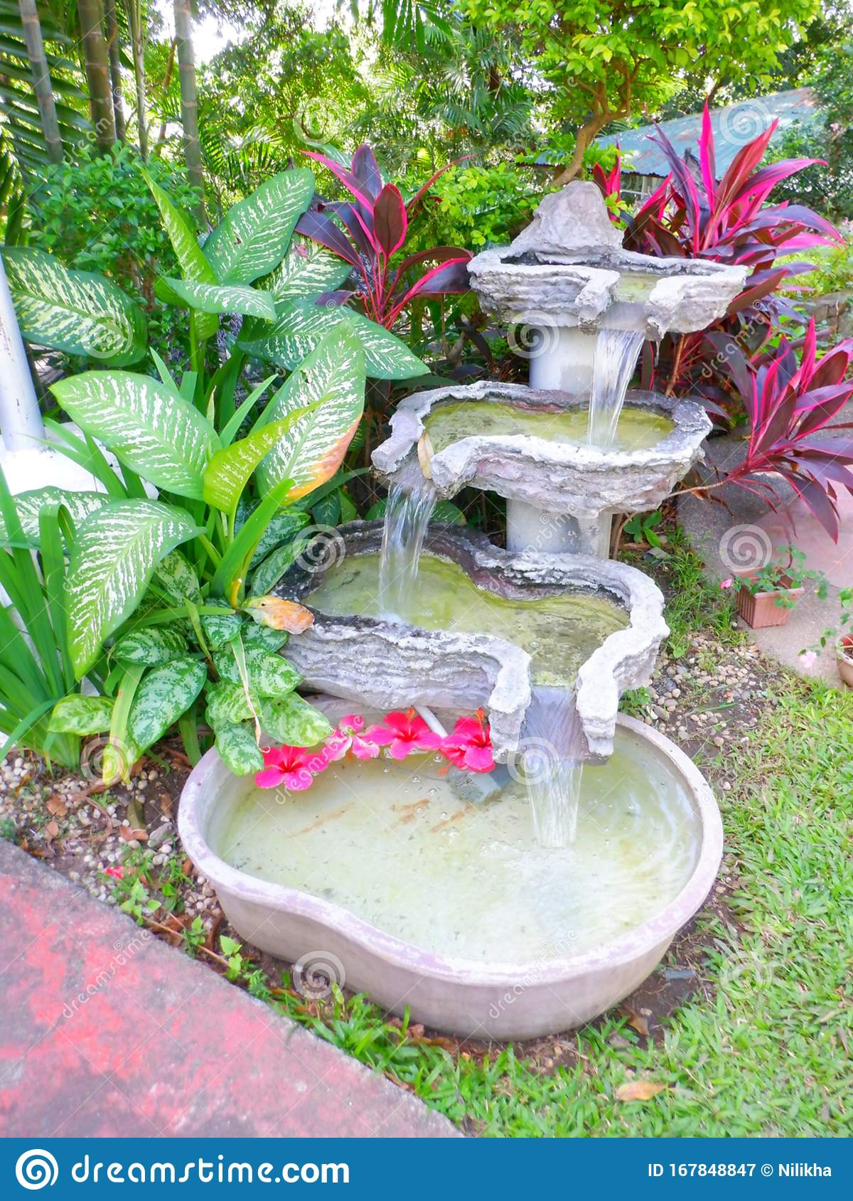 Water fountain with plants stock image. Image of decoration ...
