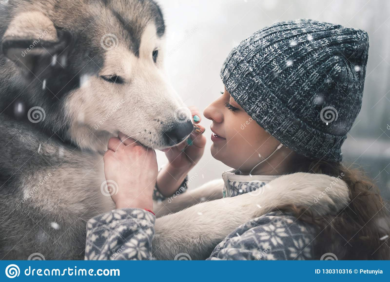 Image of young girl feeding her dog, alaskan malamute, outdoor