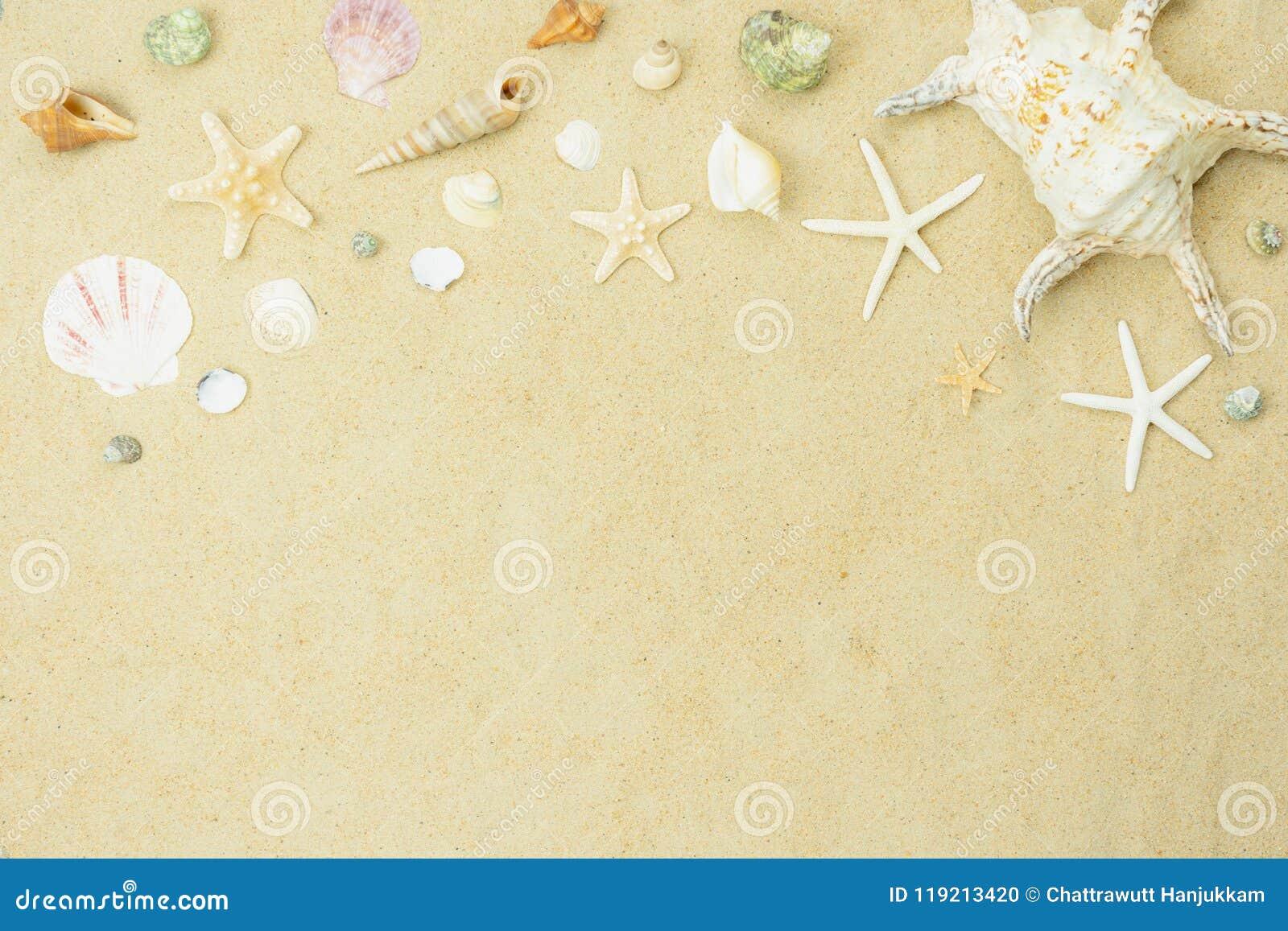 Imagem aérea da opinião de tampo da mesa do verão & do feriado da praia do curso no conceito do fundo da estação