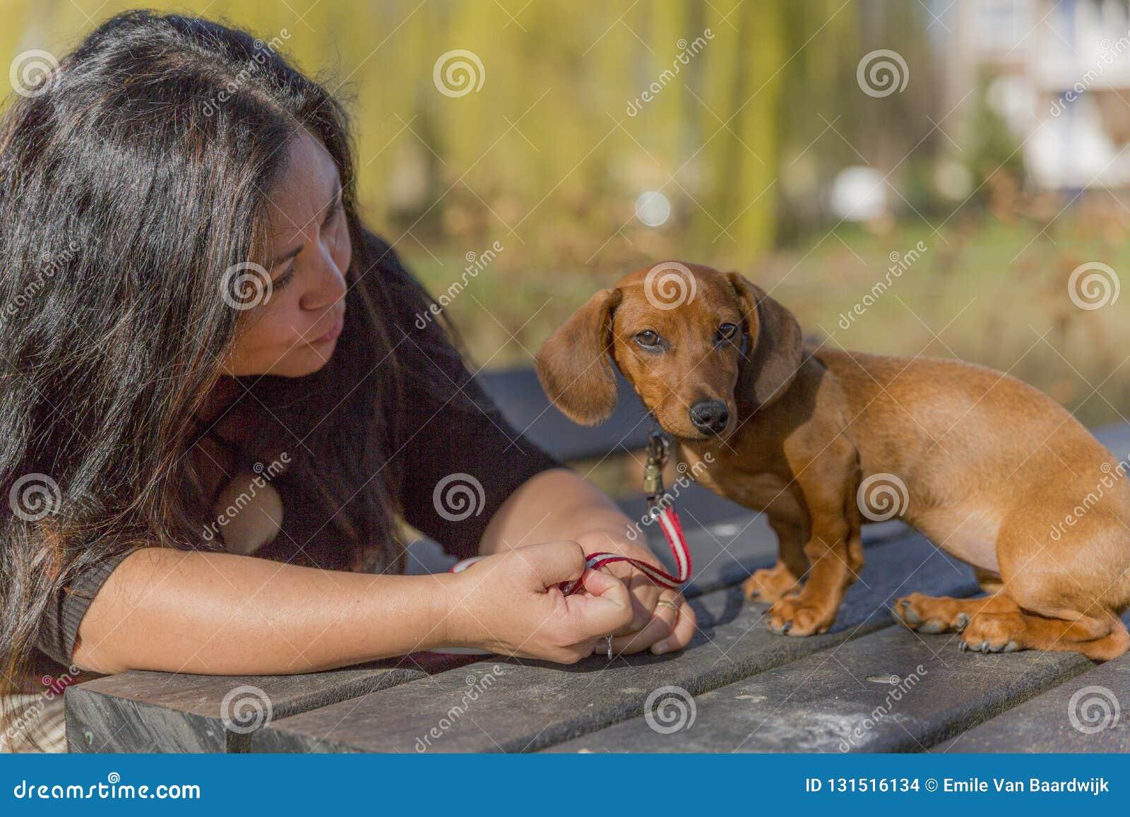 Imagem bonita de uma mulher com cabelo longo que conversa lovingly com seu cachorrinho