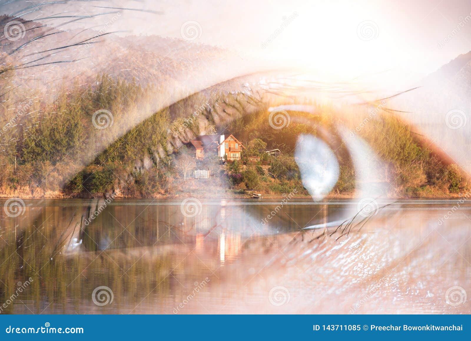 A imagem da exposição dobro do olho que olha acima a folha de prova com imagem da natureza O conceito da natureza, da liberdade,