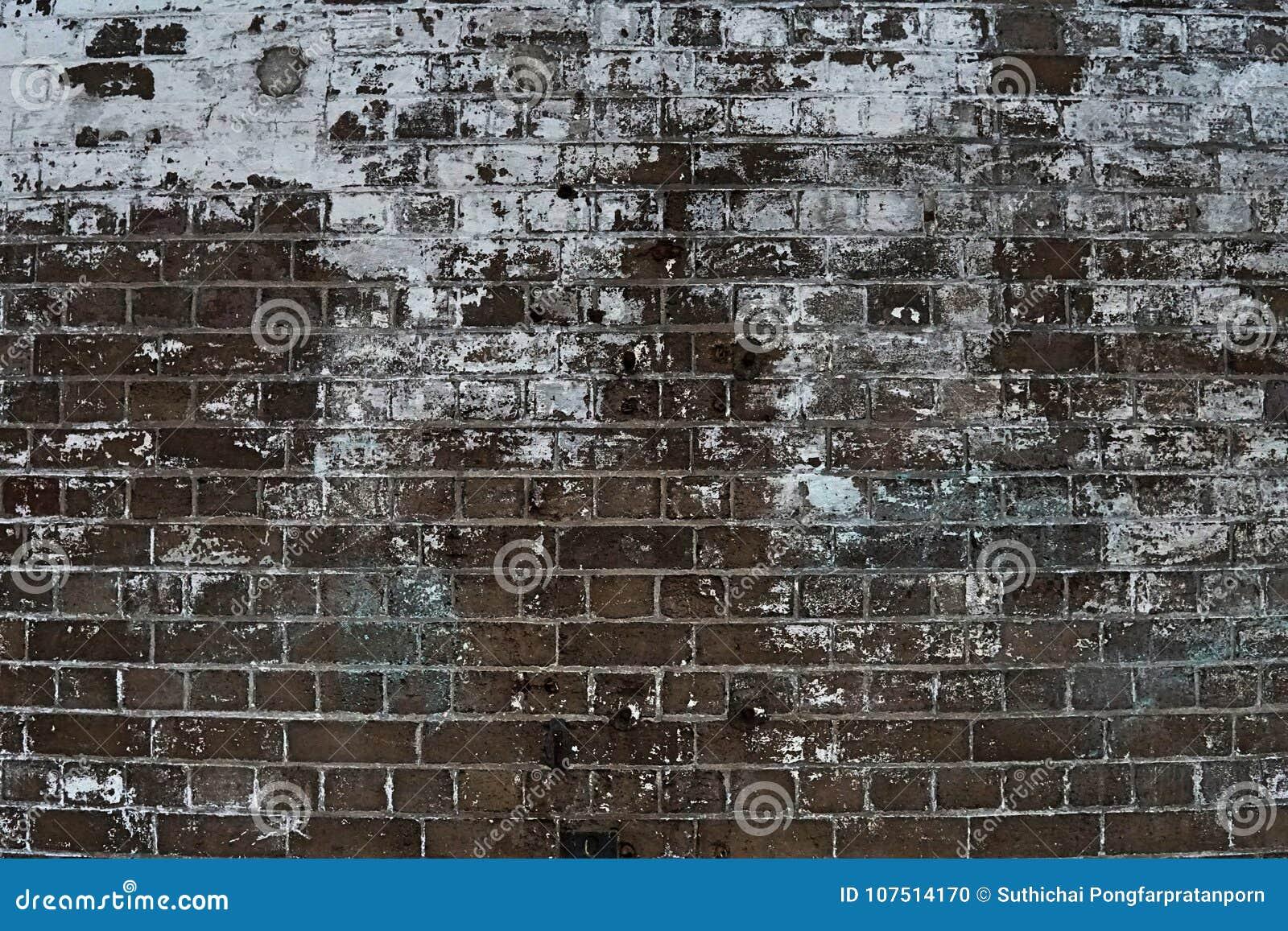 Imagem da grão do fundo da parede de pedra do tijolo em detalhe e do patte da textura