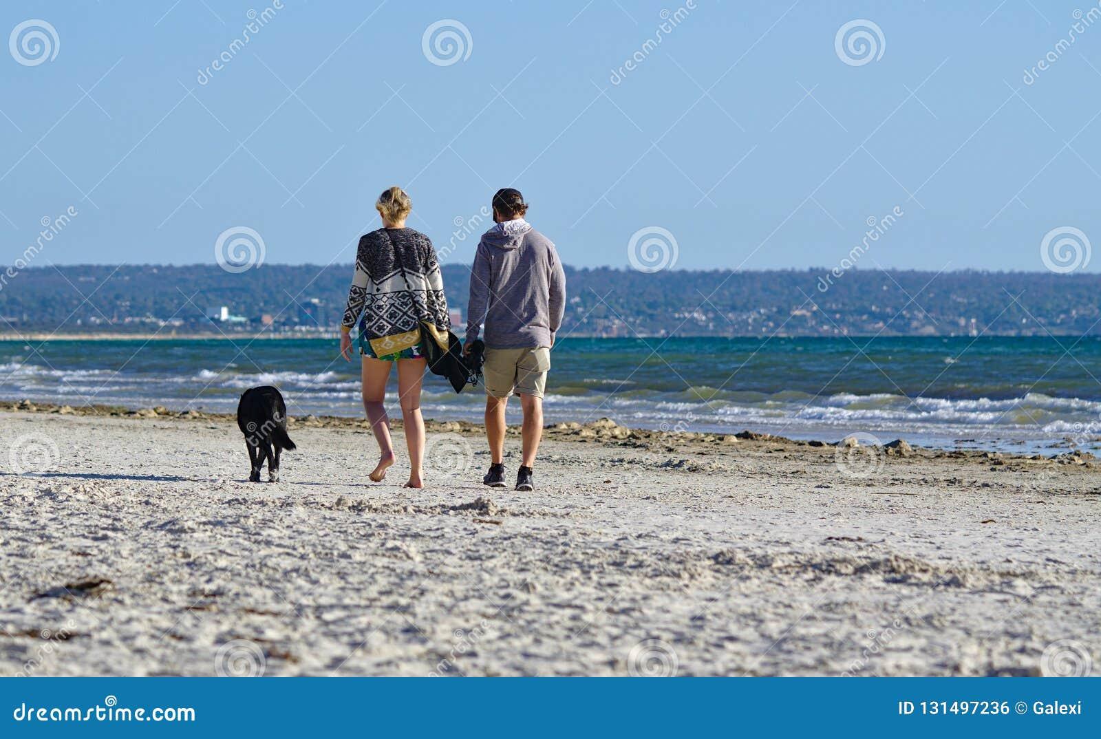 Imagem de um par com seu cão que anda na praia