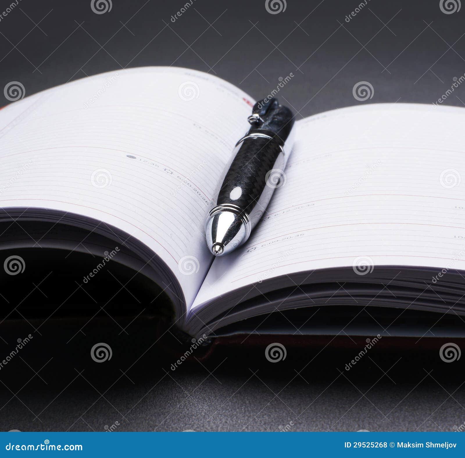 Imagem do Fim-acima de um diário aberto e de uma pena