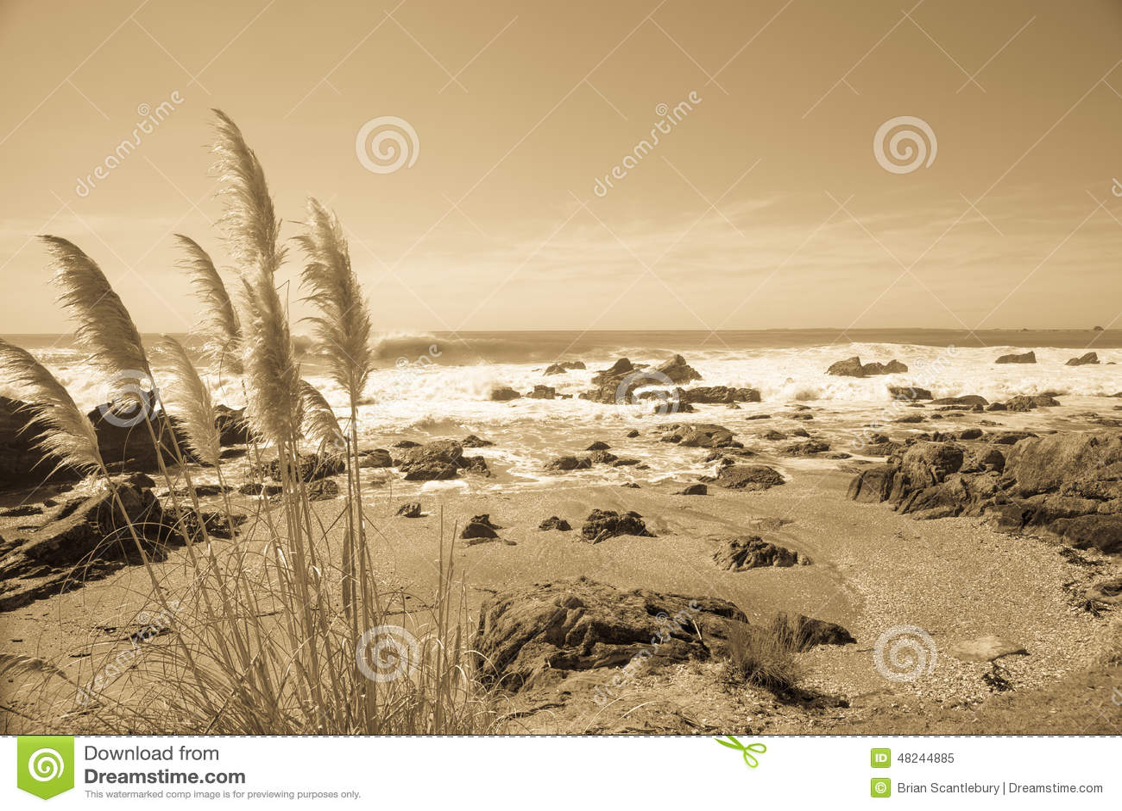 Imagem litoral no sepia