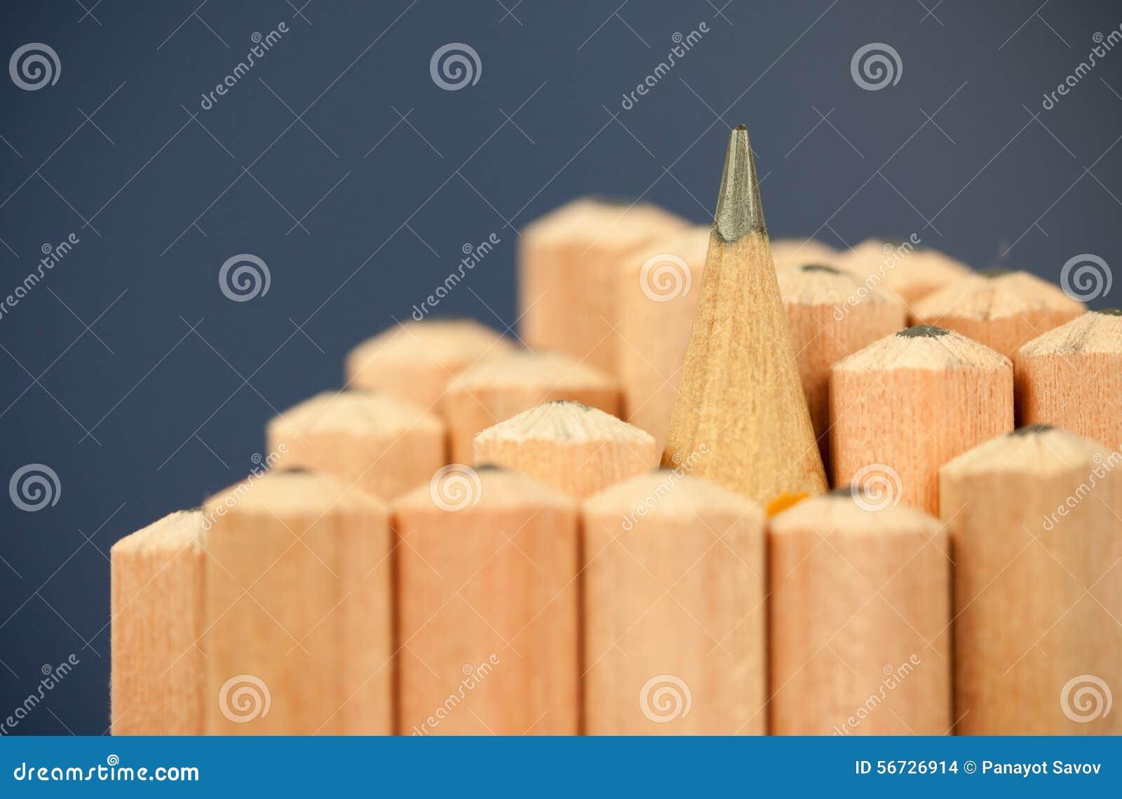 Imagem macro da ponta da grafite de um lápis de madeira ordinário afiado como o desenho e a ferramenta de esboço, estando entre o