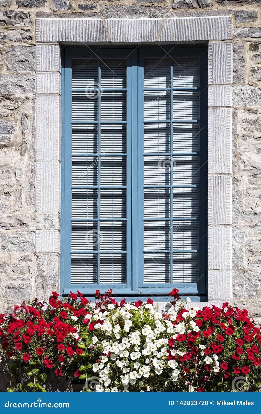 Imagem vertical simples da janela coberta de pedra com variações da flor na parte dianteira