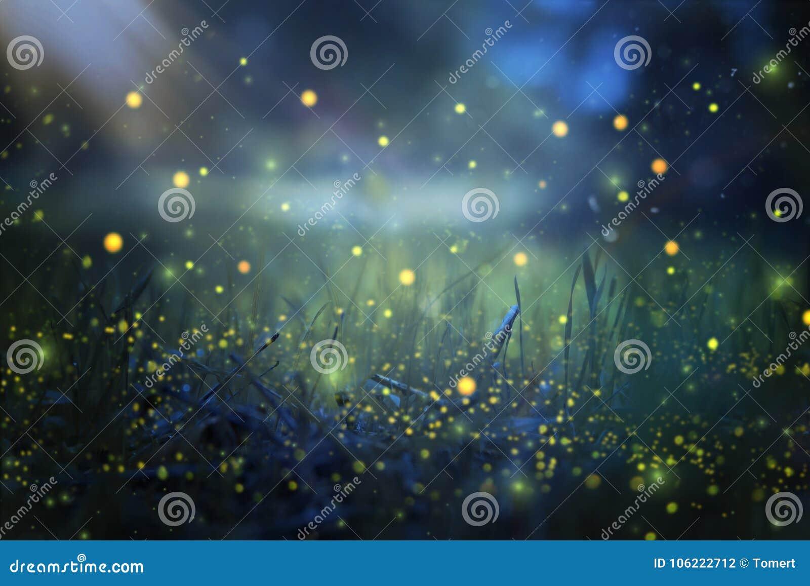 Imagen abstracta y mágica del vuelo de la luciérnaga en el concepto del cuento de hadas del bosque de la noche