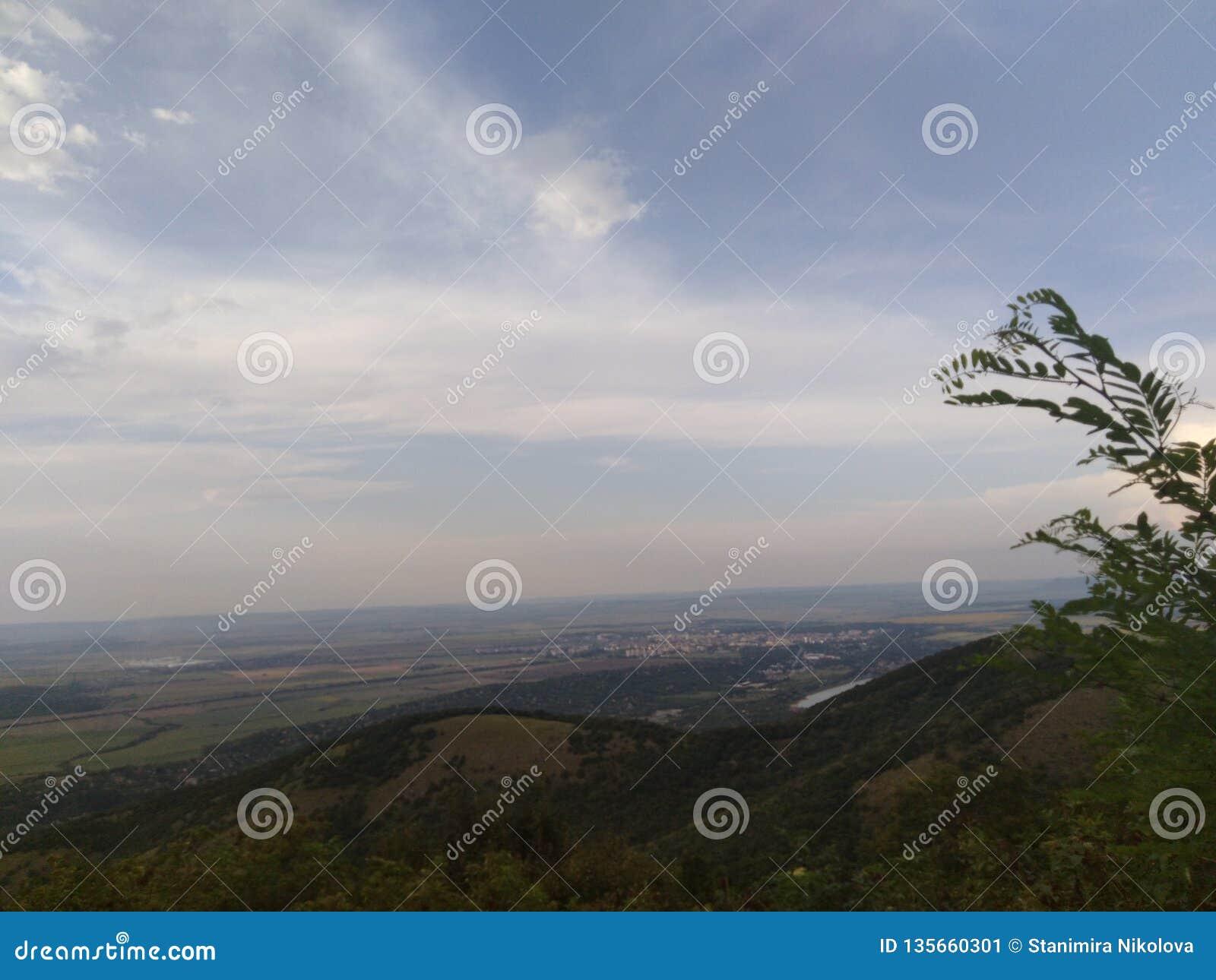 Imagen con vista de pájaro