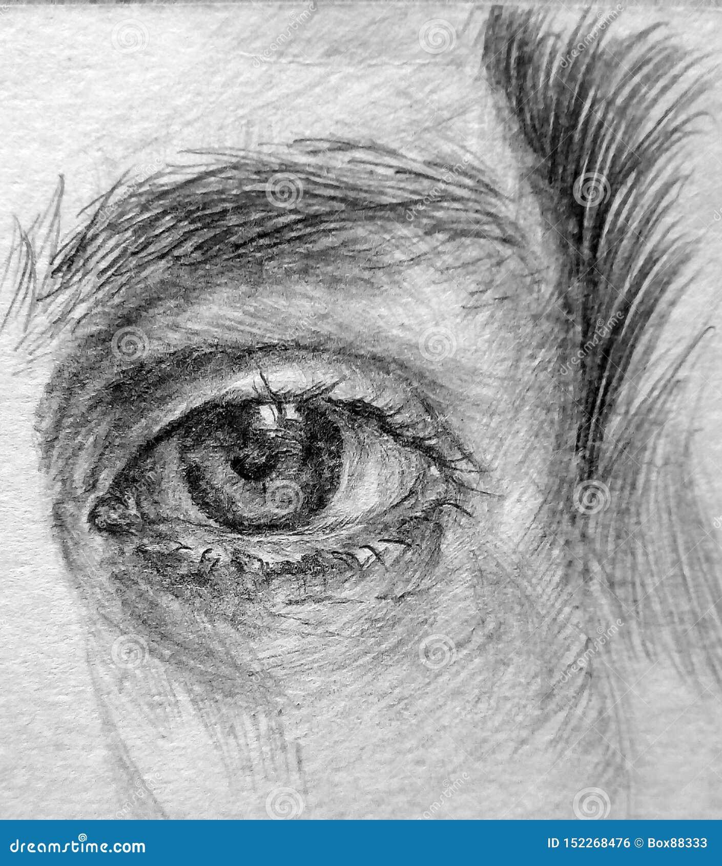 Imagen del primer del ojo humano