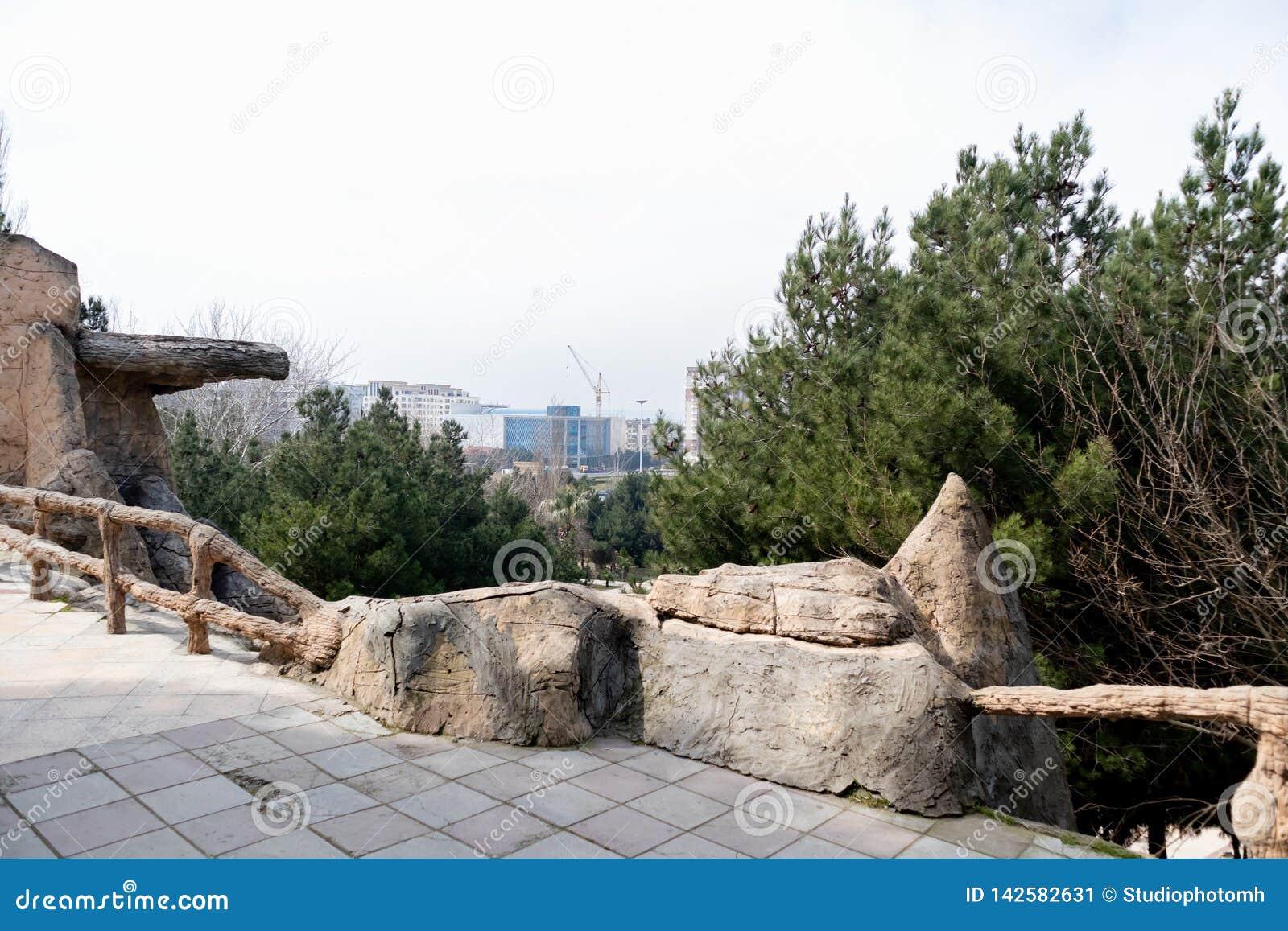 Imagen hermosa del parque Opinión del ojo de pájaro de edificios en la parte posterior