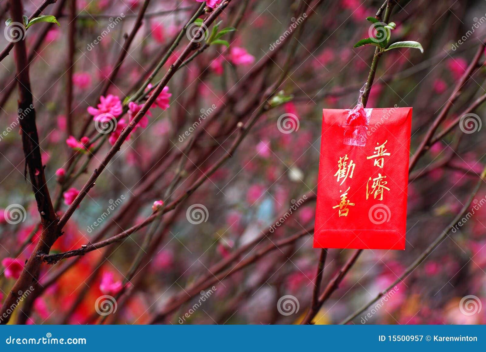 Imagens chinesas do ano novo