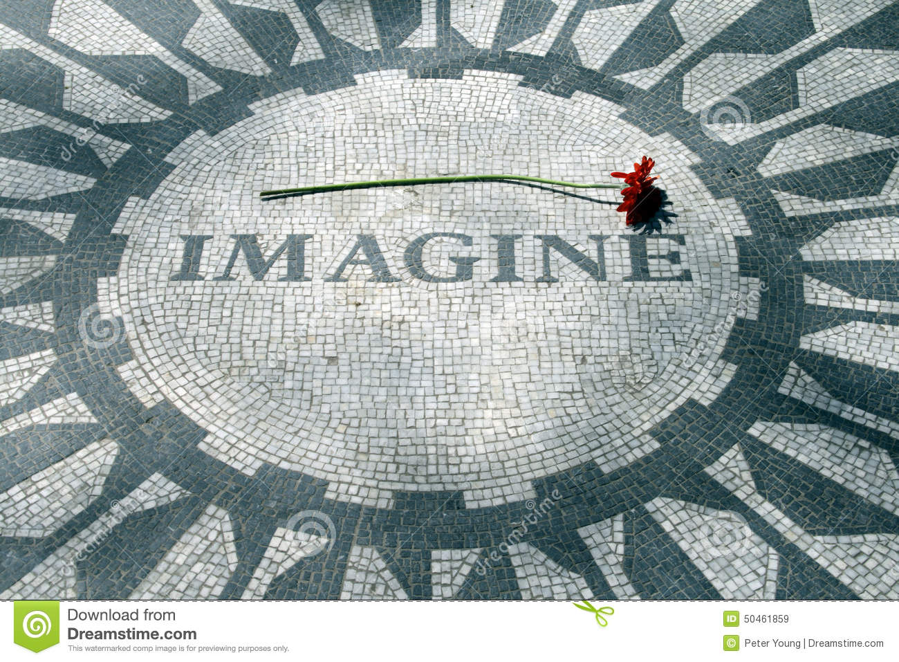 Image result for imagine mosaic