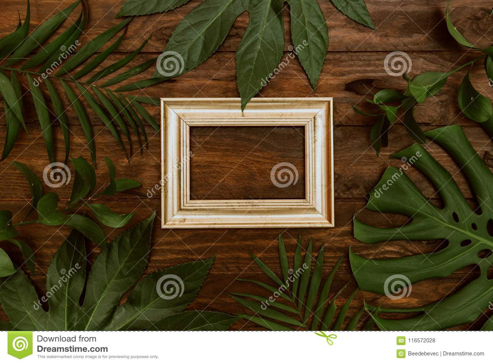 Imite encima del capítulo de hojas tropicales en fondo de madera con el espacio para el texto