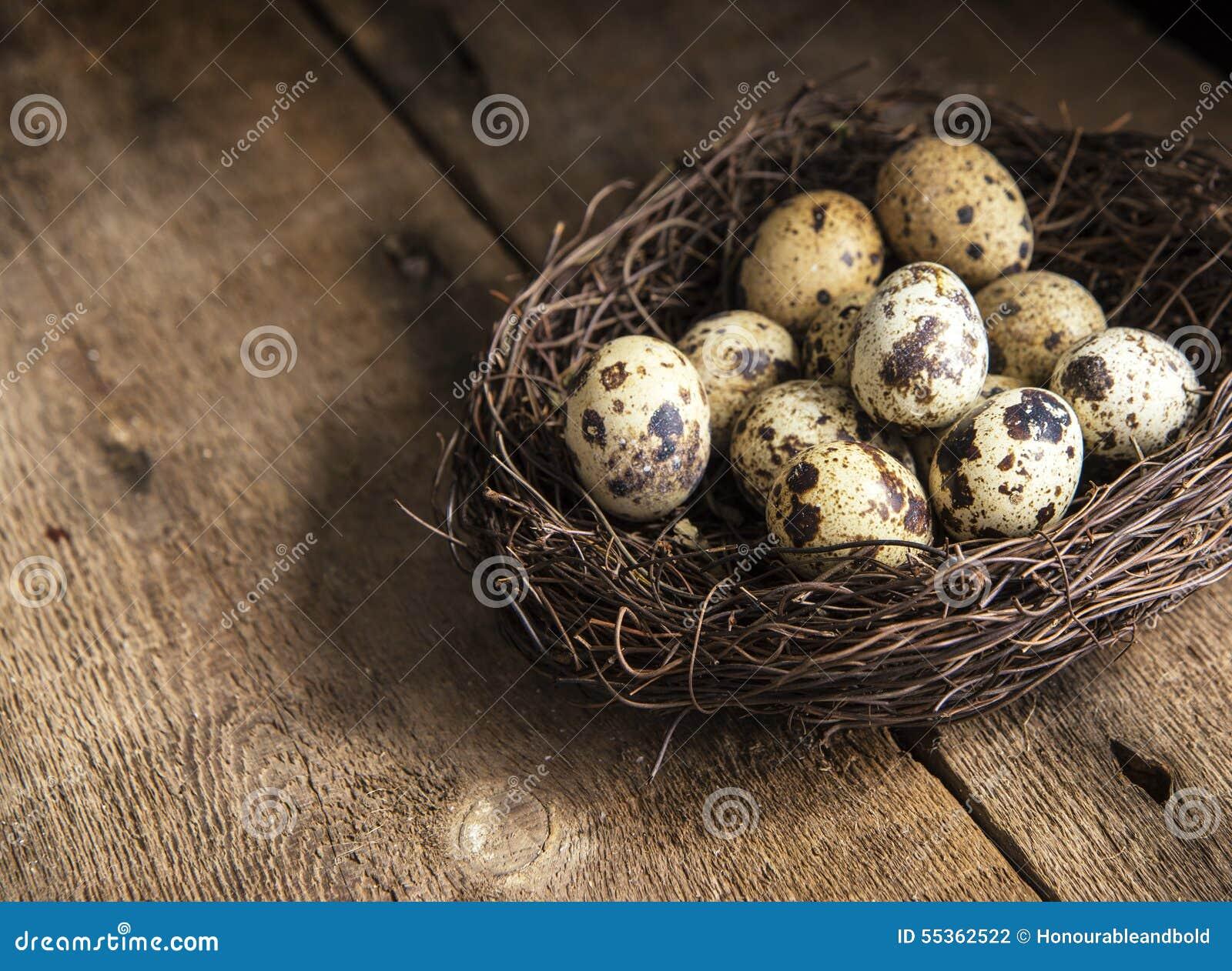 Immagine d annata lunatica di stile di illuminazione naturale la retro dei quaills eggs