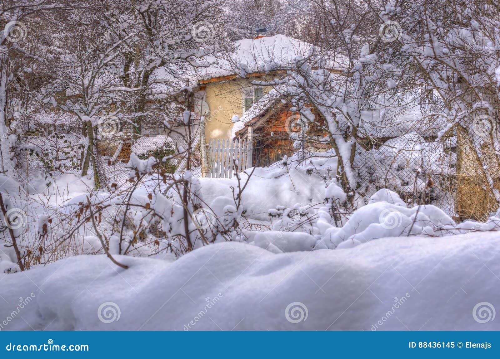 Immagine di inverno - nevicando