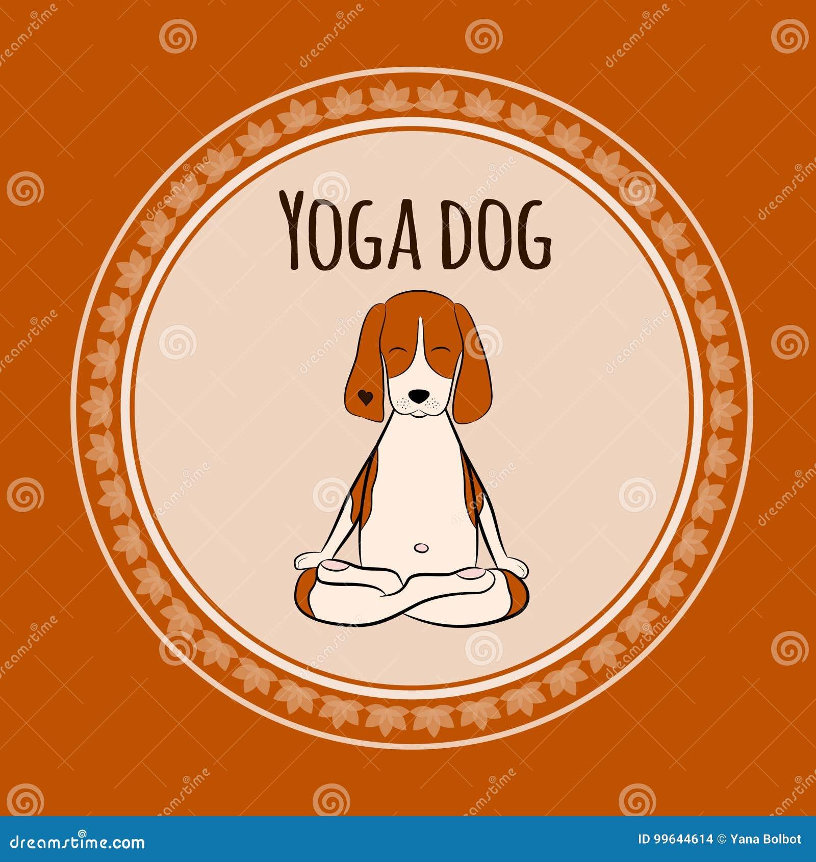 Immagine di un cane da lepre divertente del cane del fumetto che si siede sulla posizione di loto di yoga