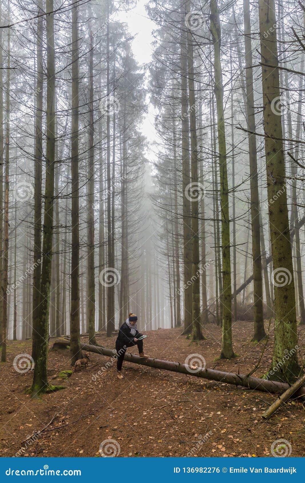 Immagine di una donna che esamina una mappa di carta che riposa su un tronco di un albero caduto fra i pini alti nella foresta