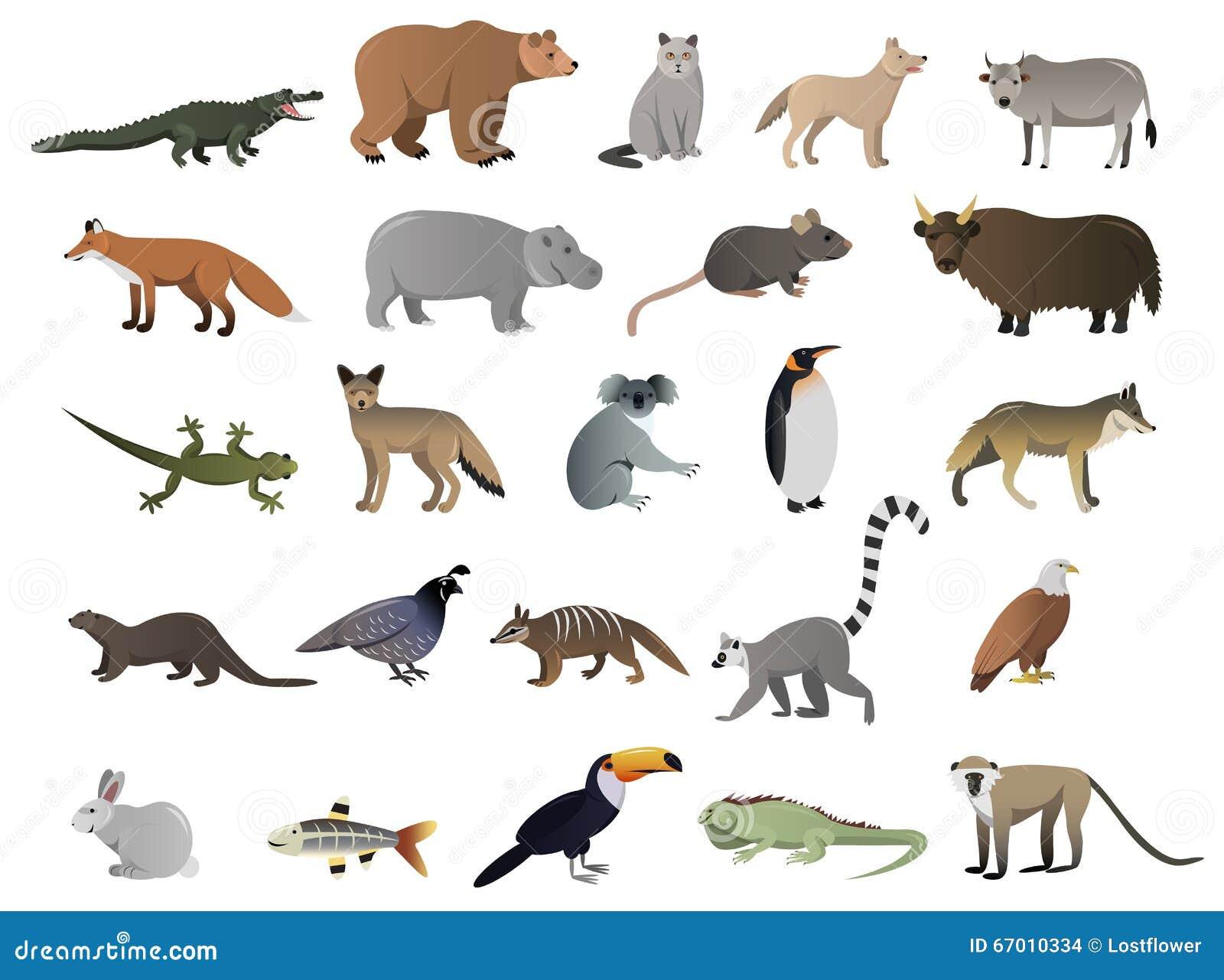Immagine di vettore degli animali selvatici