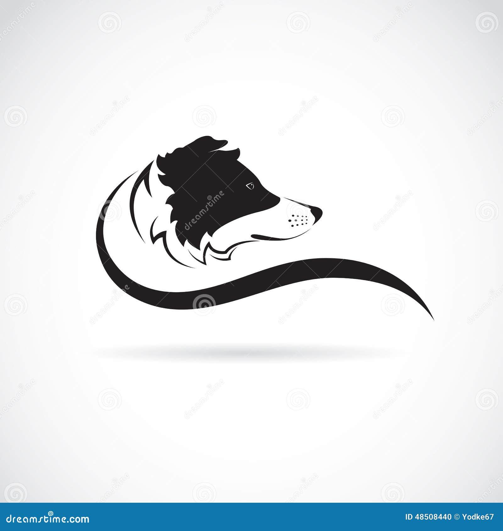 Immagine di vettore di un cane di border collie - Colorazione immagine di un cane ...