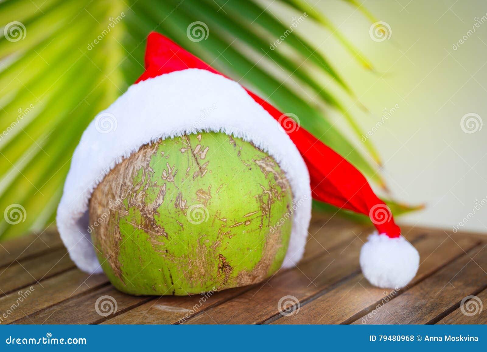 Immagine tropicale della noce di cocco in un cappello rosso e nelle foglie  di palma di Natale 41e4f1713981