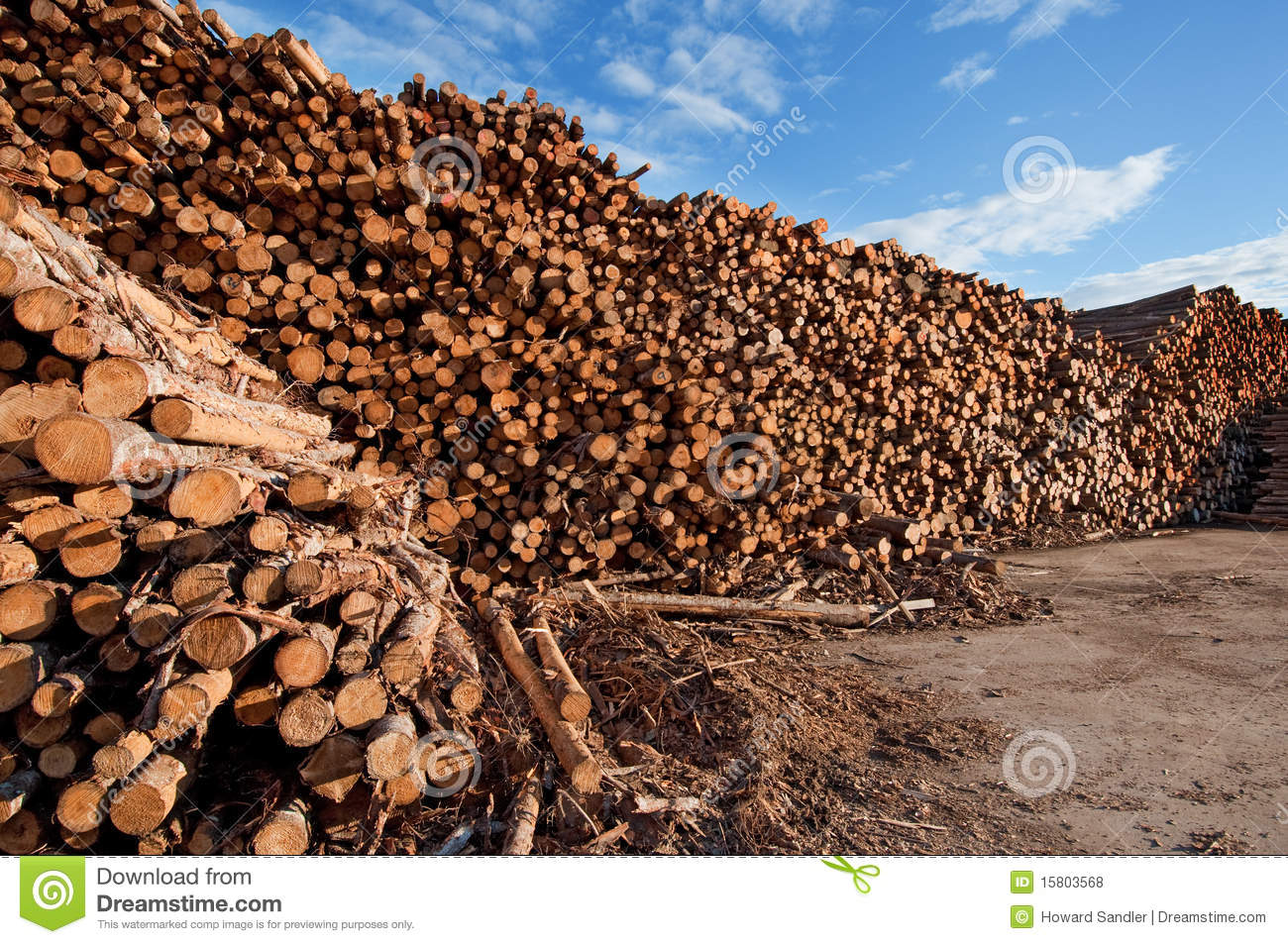 Immense Log Pile, Saguenay Quebec Royalty Free Stock Photos - Image: 15803568