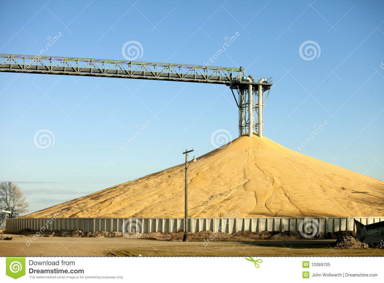 Immense Pile Of Grain Royalty Free Stock Photo - Image: 12069705