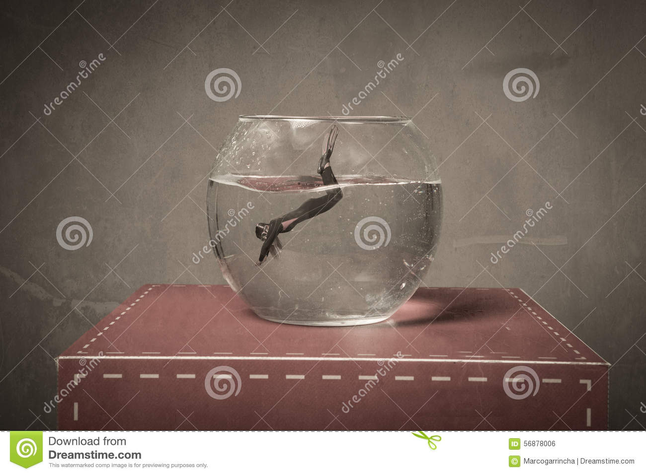 Immersion in a fish bowl