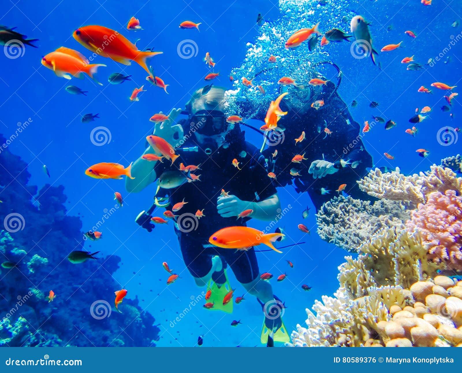 Immersione subacquea attiva di resto alle barriere coralline