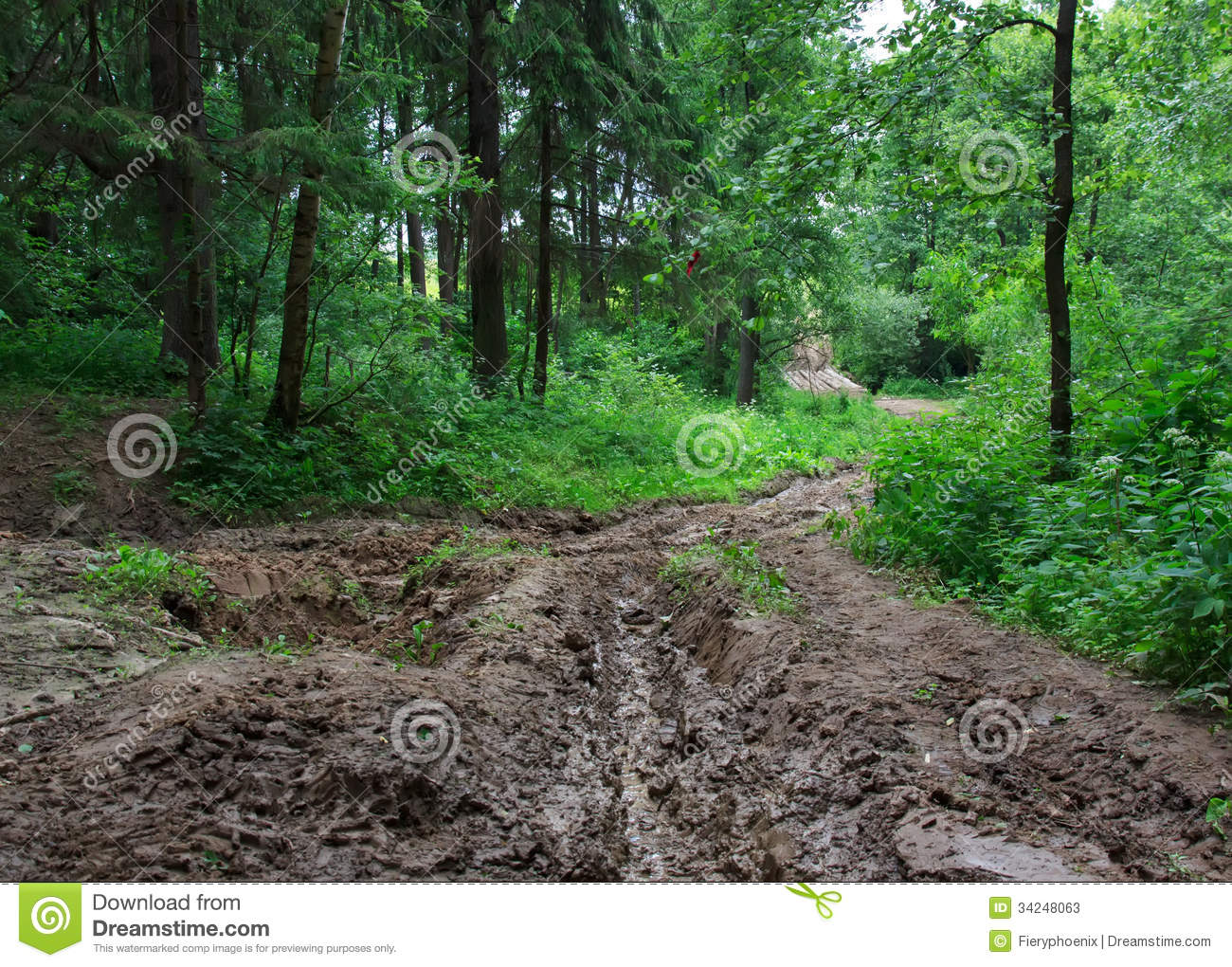 Impassable forest road of mud and clay